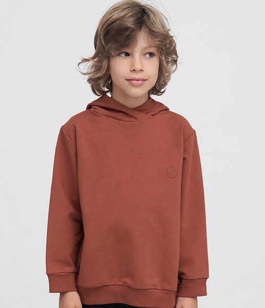 Bilde av genser med hette hjalmer